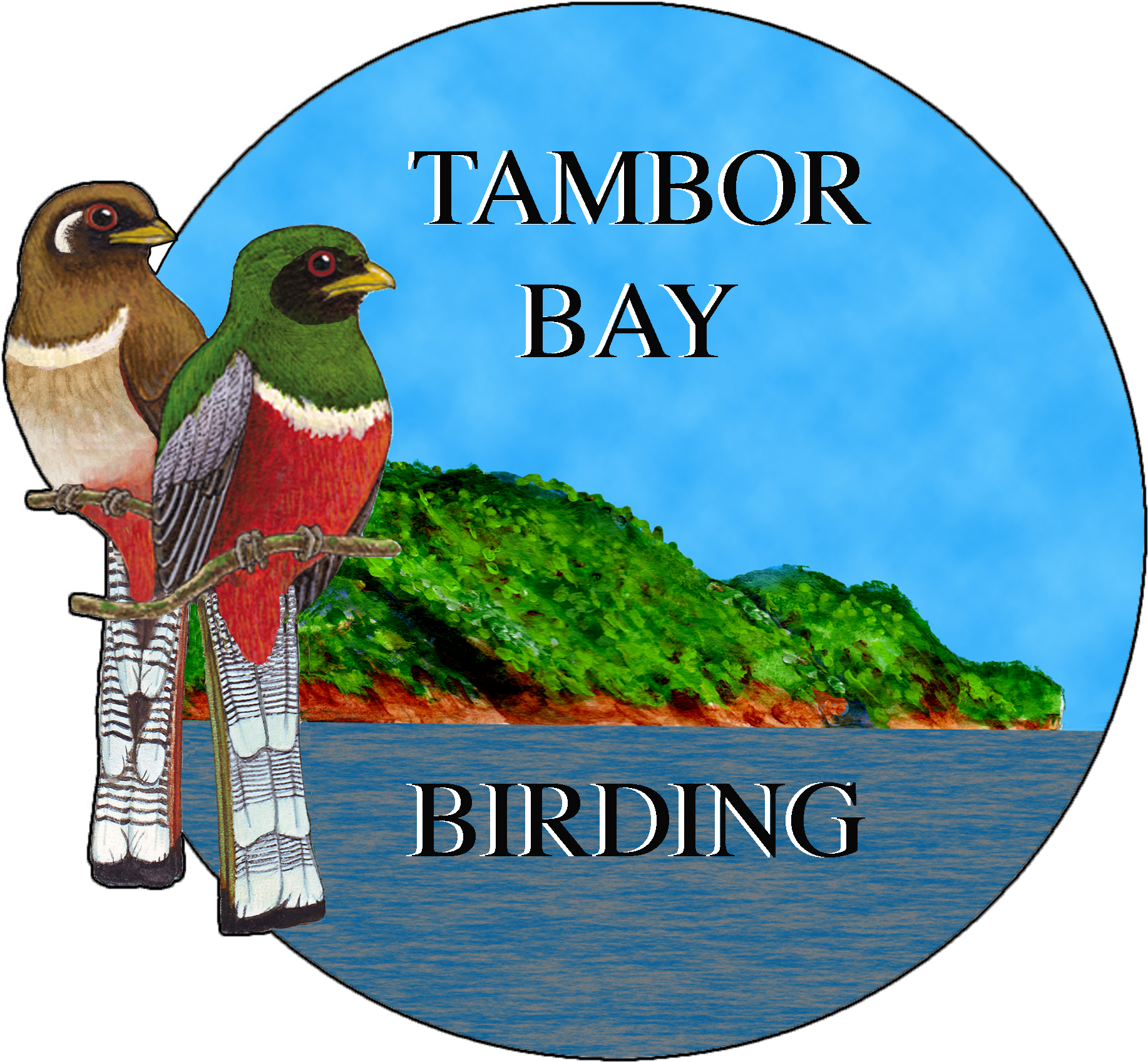 Proud member of the Tambor Bay Birding Association